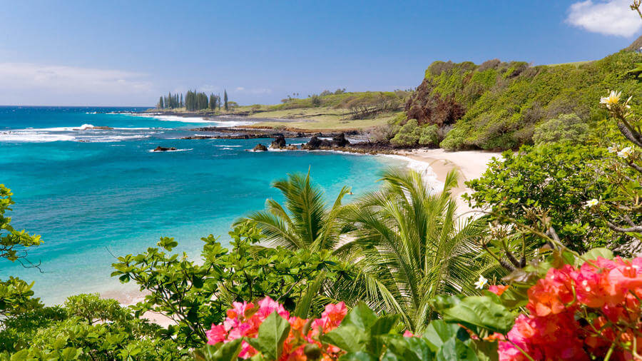 Famous Hawaii, What Can It Do For You?